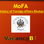 Ministry of Foreign Affairs Vacancy 2019
