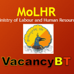 MoLHR Jobs Vacancy 2019