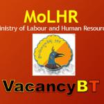 MoLHR Jobs Vacancy 2019