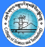 www.cst.edu.bt Vacancy 2021