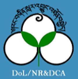 www.nca.gov.bt Vacancy 2021